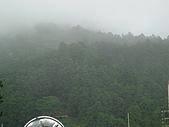 阿里山:佩芸拍-1 (10).JPG