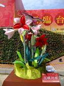 2010台灣燈會閃耀嘉義~幸福久久躍虎年 ^^ :DSCF0044.jpg