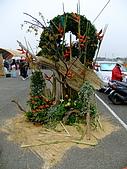 2009 嘉義市 花海節:DSCF1281.jpg