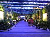 2010 台北花卉博覽會(台北小巨蛋) 花都:RIMG1146.JPG