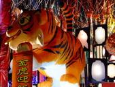 2010台灣燈會閃耀嘉義~幸福久久躍虎年 ^^ :DSCF0818.JPG