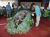2010台北花博記者會(台北市政府) 花都 :DSCF1083.JPG