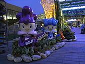 2010 台北花卉博覽會(台北小巨蛋) 花都:RIMG1107.JPG