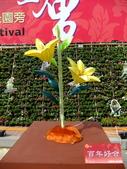 2010台灣燈會閃耀嘉義~幸福久久躍虎年 ^^ :DSCF0047.jpg