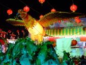 2010台灣燈會閃耀嘉義~幸福久久躍虎年 ^^ :DSCF0863.JPG