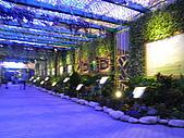 2010 台北花卉博覽會(台北小巨蛋) 花都:RIMG1115.JPG