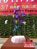 2010台灣燈會閃耀嘉義~幸福久久躍虎年 ^^ :DSCF0049.jpg