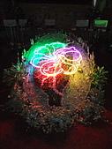 2010台北花博記者會(台北市政府) 花都 :DSCF1093.jpg