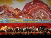 2010台灣燈會閃耀嘉義~幸福久久躍虎年 ^^ :DSCF0913.JPG