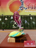 2010台灣燈會閃耀嘉義~幸福久久躍虎年 ^^ :DSCF0038.jpg