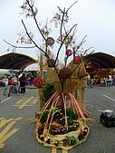2009 嘉義市 花海節:DSCF1286.jpg