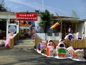 2010台灣燈會閃耀嘉義~幸福久久躍虎年 ^^ :DSCF0228.JPG