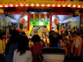 2010台灣燈會閃耀嘉義~幸福久久躍虎年 ^^ :DSCF0877.JPG