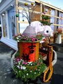 2010台灣燈會閃耀嘉義~幸福久久躍虎年 ^^ :DSCF0278.jpg