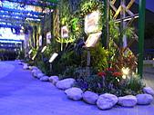 2010 台北花卉博覽會(台北小巨蛋) 花都:RIMG1135.JPG