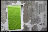 2011嘉義民雄+新港板陶社區+雲林北港一日遊:20110517嘉義修圖0056.jpg