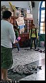 2011車城長老教會兒童冬令營:P1250350.jpg