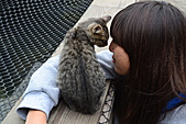 人與貓不可思議的邂逅:DSC_0166.JPG