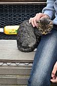 人與貓不可思議的邂逅:DSC_0168.JPG