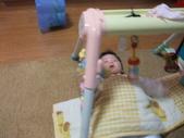 家裡的新成員澄澄:DSCF0983.JPG