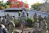 京都----楓紅...賞楓:DSC_0146.JPG