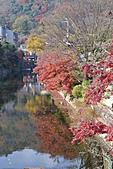 京都----楓紅...賞楓:DSC_0100.JPG