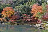 京都----楓紅...賞楓:DSC_0158.JPG