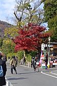 京都----楓紅...賞楓:DSC_0127.JPG
