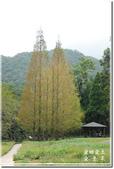 員山_福山植物園之秋:DSC_3224.jpg