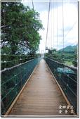 草屯_雙十吊橋:DSC_4403.jpg