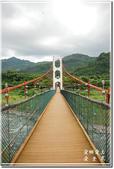 草屯_雙十吊橋:DSC_4417.jpg