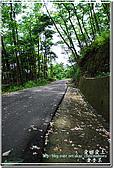2010/4/17夢幻桐花步道:DSC_1934.jpg