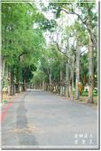 後壁_烏樹林休閒文化園區:DSC_7838.jpg