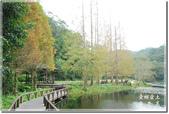 員山_福山植物園之秋:DSC_3146.jpg