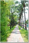 新營_南瀛綠都心公園:DSC_7706.jpg