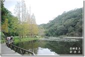 員山_福山植物園之秋:DSC_3204.jpg