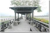 池上_浮圳 大觀亭 油菜花:DSC_7531.jpg