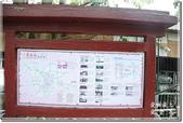 草屯_雙十吊橋:DSC_4390.jpg
