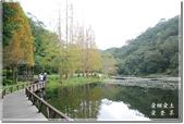 員山_福山植物園之秋:DSC_3205.jpg