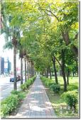 新營_南瀛綠都心公園:DSC_7702.jpg