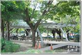 新營_南瀛綠都心公園:DSC_7712.jpg