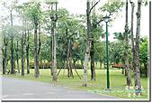 羅東運動公園:DSC_2031.jpg
