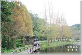 員山_福山植物園之秋:DSC_3207.jpg