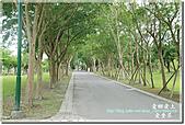 羅東運動公園:DSC_2033.jpg
