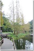 員山_福山植物園之秋:DSC_3209.jpg
