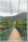 草屯_雙十吊橋:DSC_4412.jpg