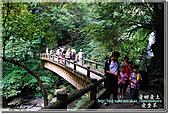 三峽_滿月圓瀑布:DSC_6366.jpg