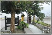 池上_浮圳 大觀亭 油菜花:DSC_7533.jpg