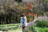 層楓武陵20141216:DSC_0307.JPG