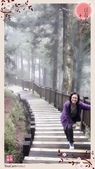 噶瑪蘭中海拔之旅:2014-11-11-19-47-24-885.jpg